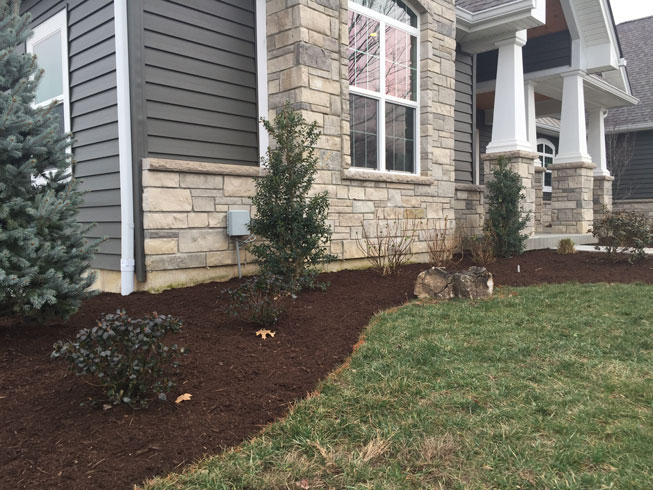 bushes and perennials in a frontyard landscape design by Tennant