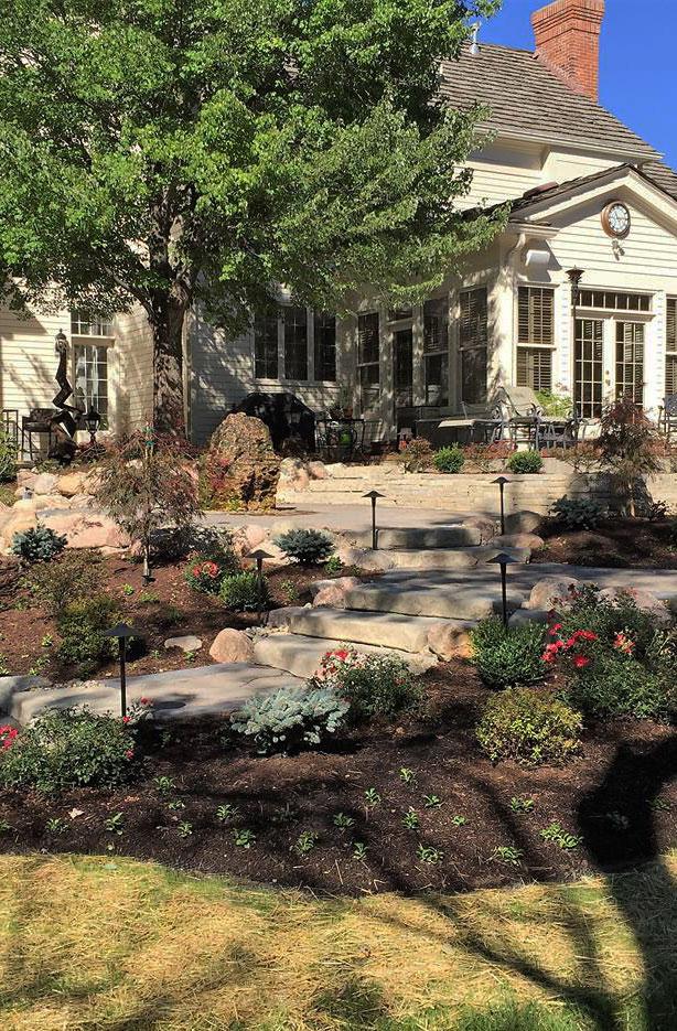 A backyard design featuring a patio, steps and a perennial garden