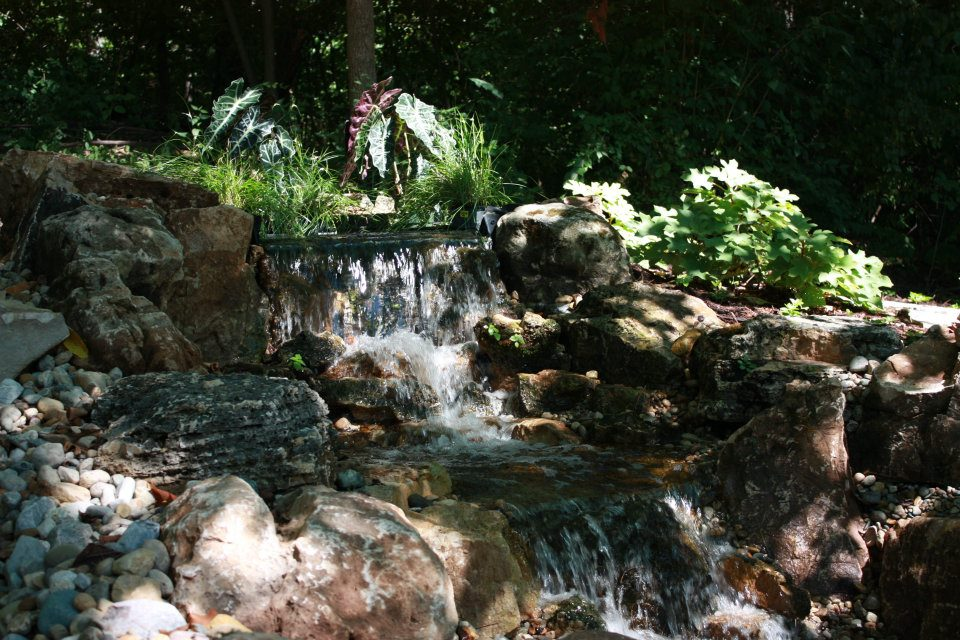 A beautiful waterfall with plants by Tennant Lawn Service